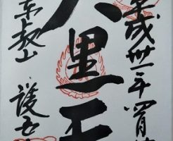 東叡山寛永寺護国院の御朱印